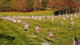 Massachusetts National Cemetery is located in Barnstable County on Cape Cod, approximately 65 miles southeast of Boston and adjacent to the Otis Air Force Base. Twice a year The Monti Foundation places over 60,000 Flags for the Fallen, That is why we support them.